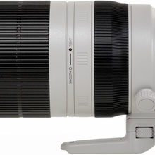 Canon 100-400mm F4.5-5.6 L IS II - 100%