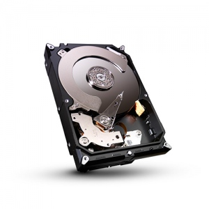 Seagate Barracuda 250GB - 7200rpm - 16Mb caches - SATAII