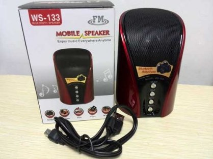 Loa bluetooth Wster WS-133