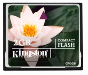 Kingston CF 2GB 90x