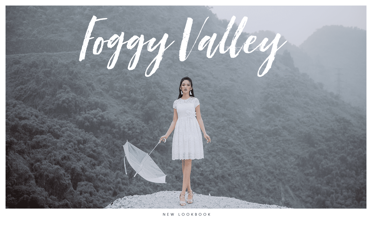 Foggy Valley