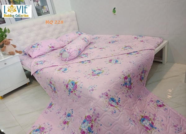 BỘ DRAP COTTON LOVIE HQ 228 -1M6