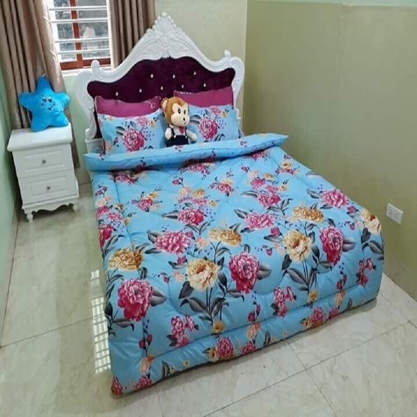 Bộ Drap cotton Poly Lovie PL27