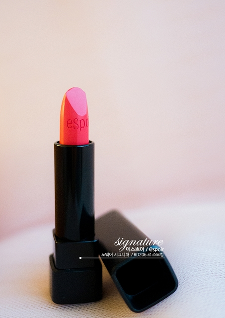 Lipstick No Wear Signature RD206 Le Smoking