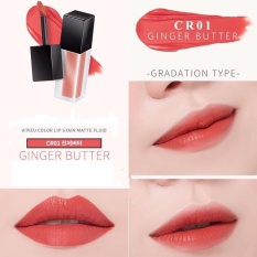 Son Apieu Color Lip Stain #CR01