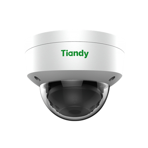 Camera IP Tiandy TC-NC252