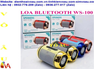 LOA BLUETOOTH WS-100