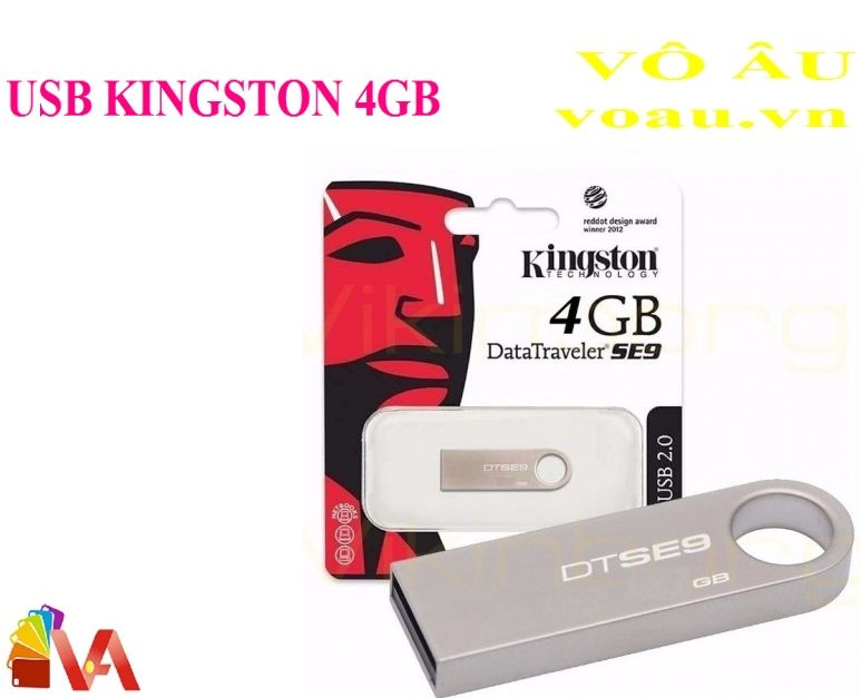 USB KINGSTON 4GB SE9