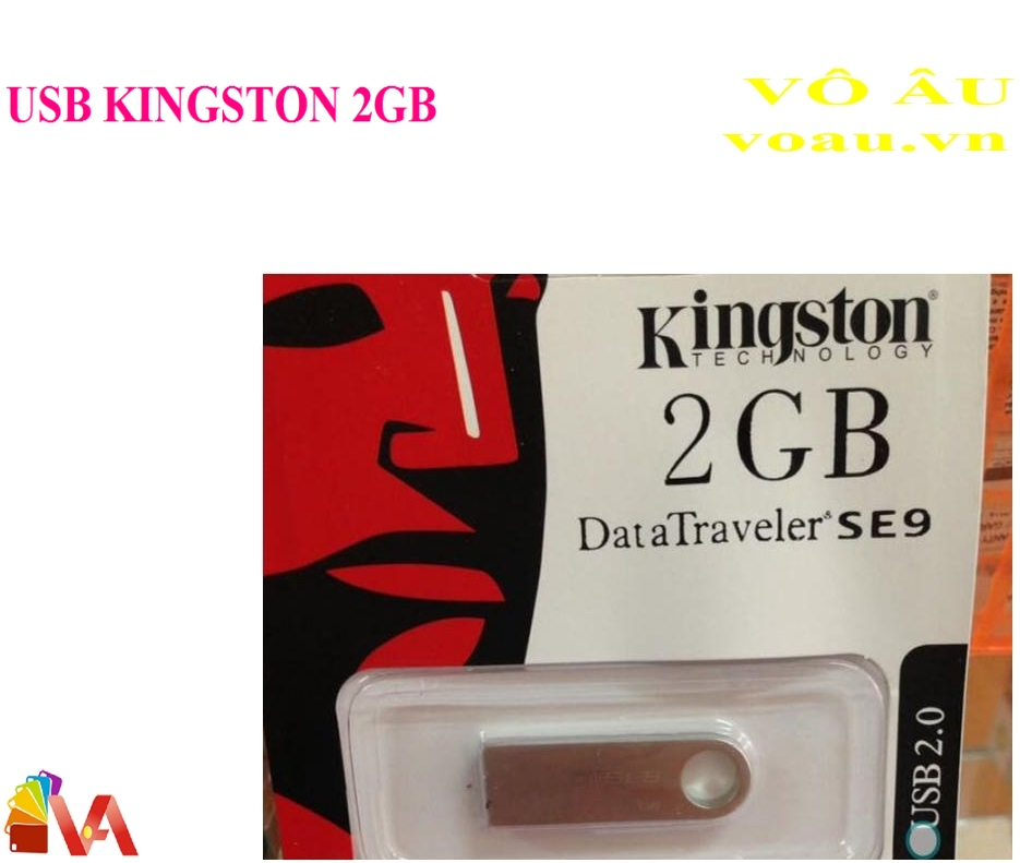 USB KINGSTON 2GB SE9