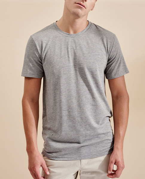 ALDEN T-SHIRT (GREY)